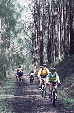 Report on Mirboo North Annual Ride
