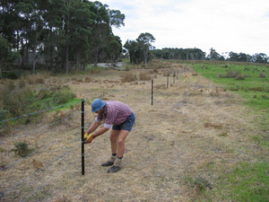 Denmark – Nornalup rail trail (WA) extensions opened