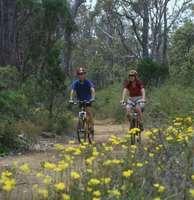 Munda Biddi Trail User Survey