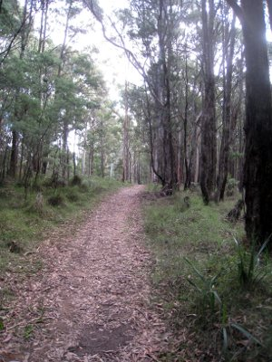 Daylesford to Woodend Trail is another step closer (VIC)