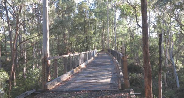 V42-512 Koetong Creek Bridge 1 2014-04 5131 for web