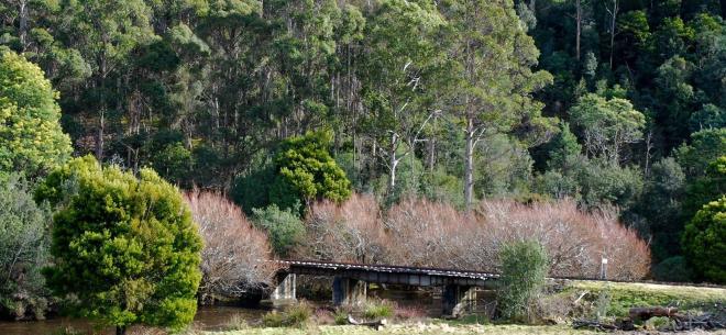 T24 255 Bridge near National Park 2015 09 web