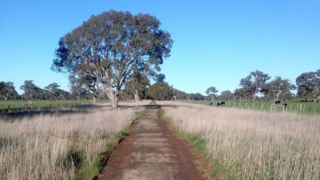 V70 057 Track looking East 2019 07 web
