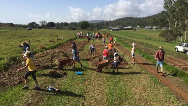 Q30 265 Hasties Rd tree planting 2020 01 9376