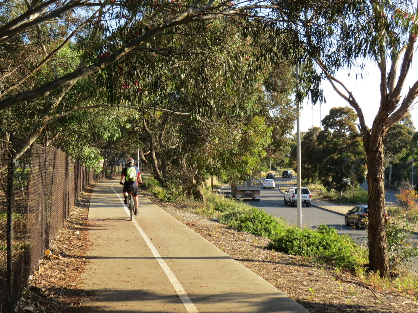 elevated trail along James Congden Drive - 2020
