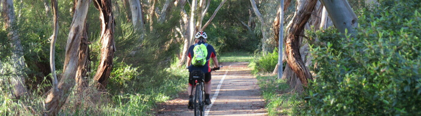 thick vegetation around the trail less than 1km from Adelaide - 2020