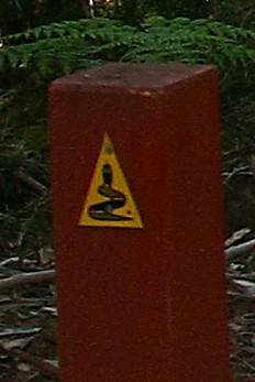 Follow the distinctive Bibbulmun Track markers