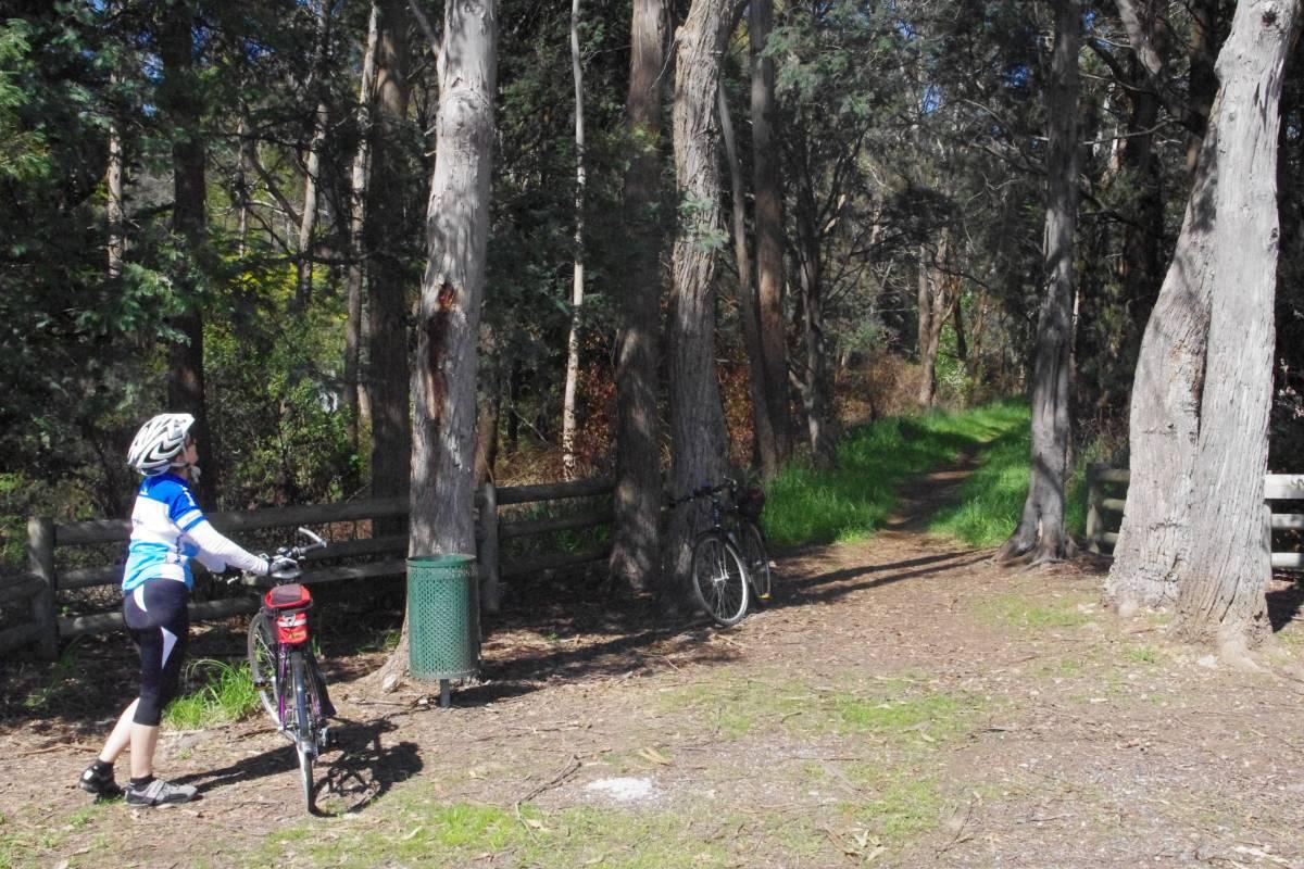 Start of the Trail at Railton (Nov 2012)