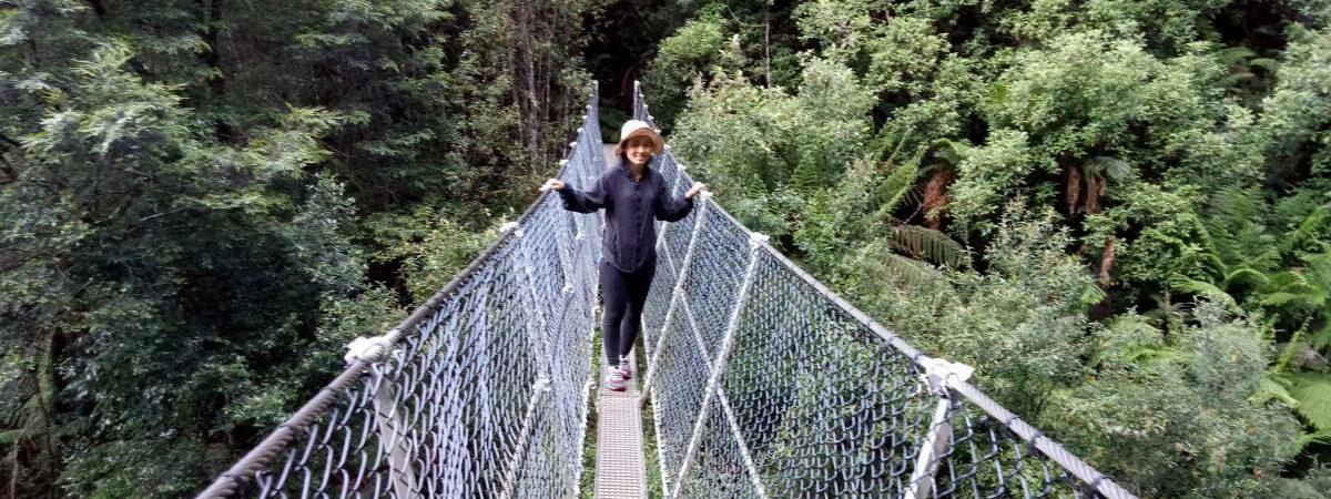 Suspension bridge at Montezuma Falls (2019)