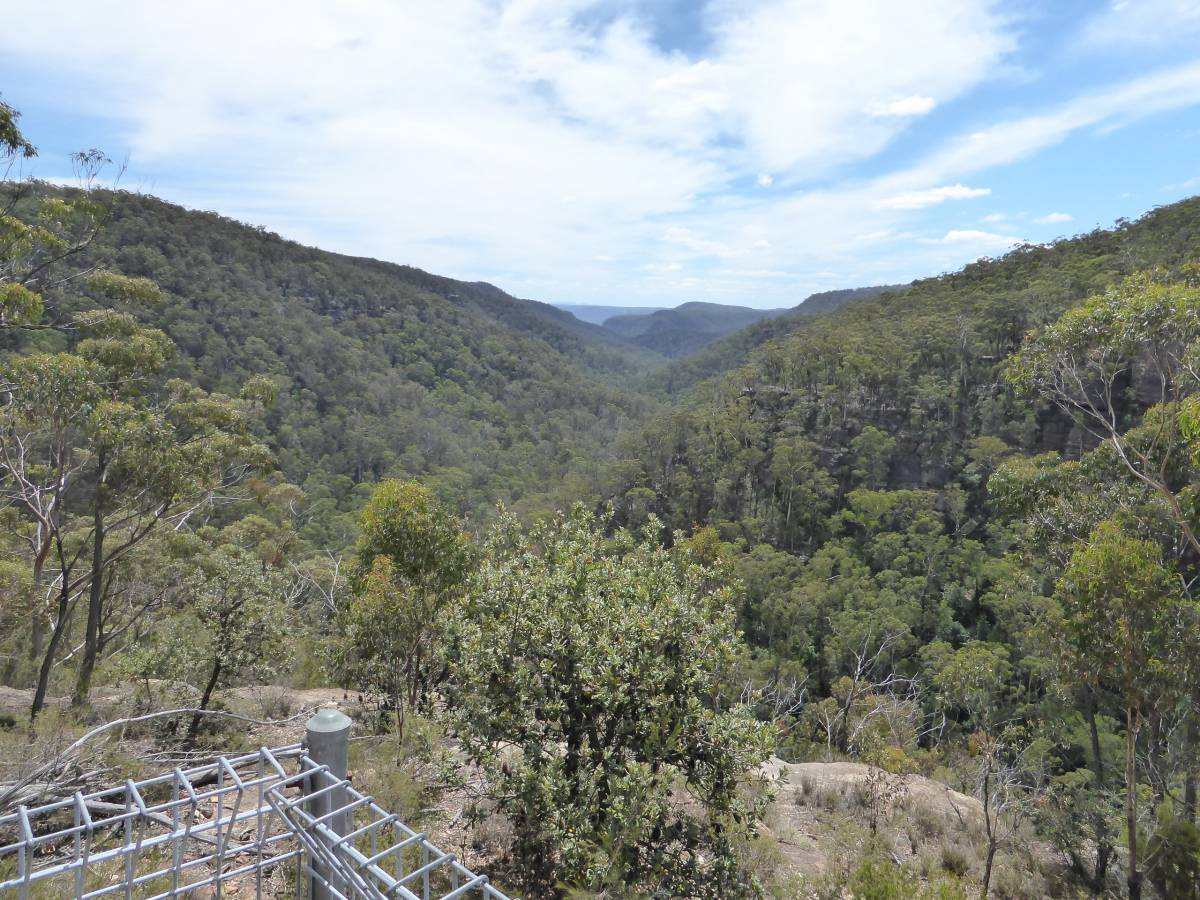 View from Nattai Gorge Lookout (Feb 2018)
