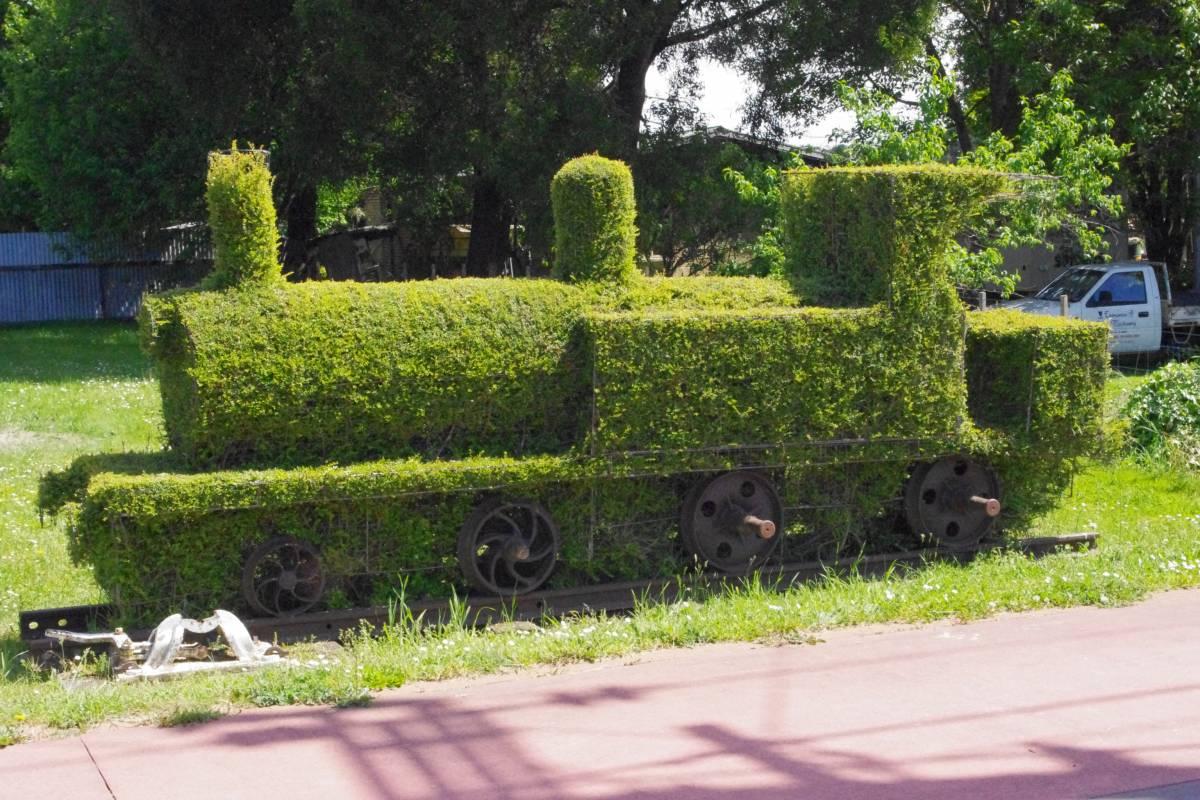 Topiary at Railton (Nov 2012)