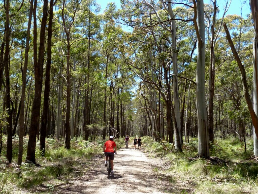 Woodend to Daylesford (incl Domino) Rail Trail