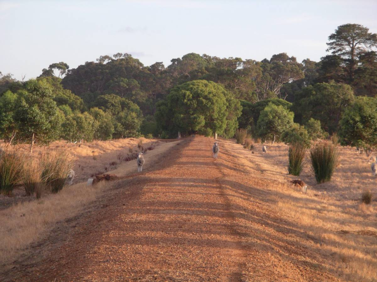 Some locals on the trail south of Margaret River 2009