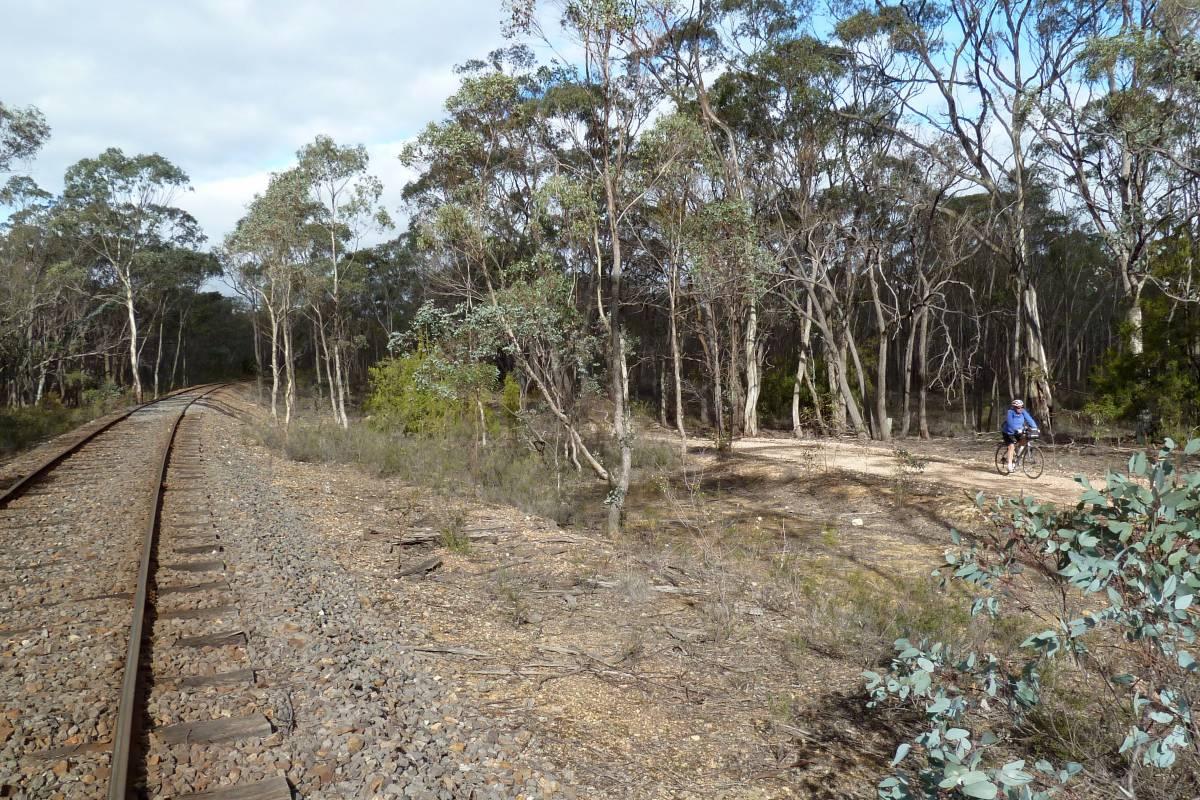 Bushland south east of Muckleford 2016