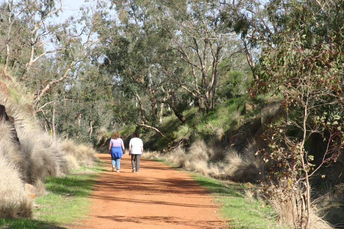 On the trail in John Forrest National Park