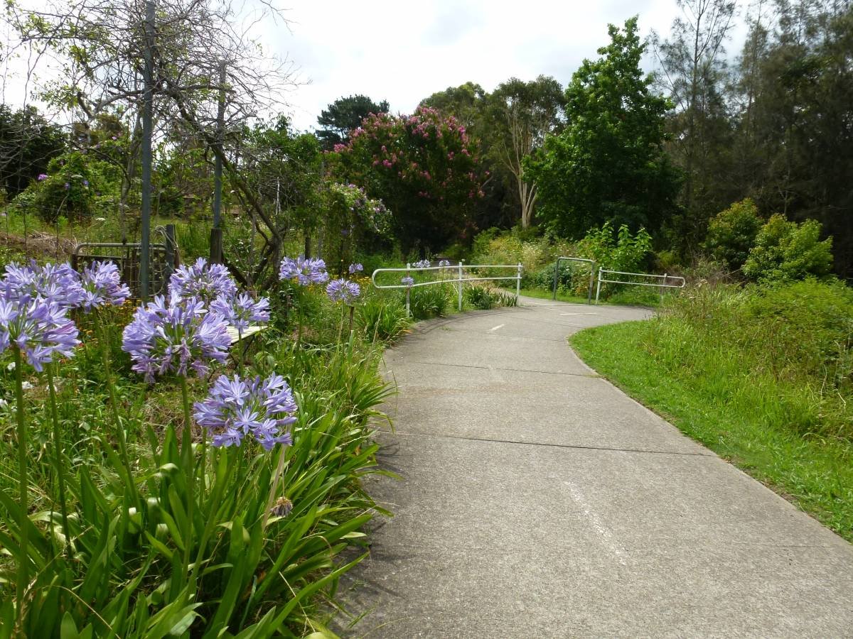 Some gardens on the trail (2013)