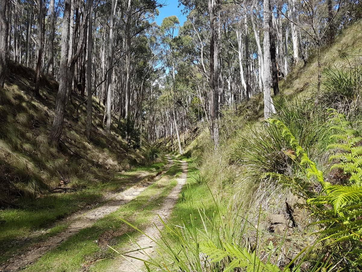 Leonards Hill to Wombat (Garry Long 2018)
