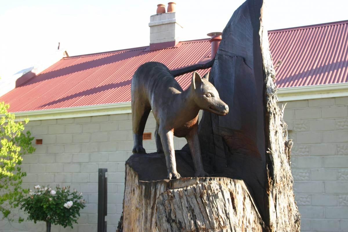 Statue of the Nannup tiger
