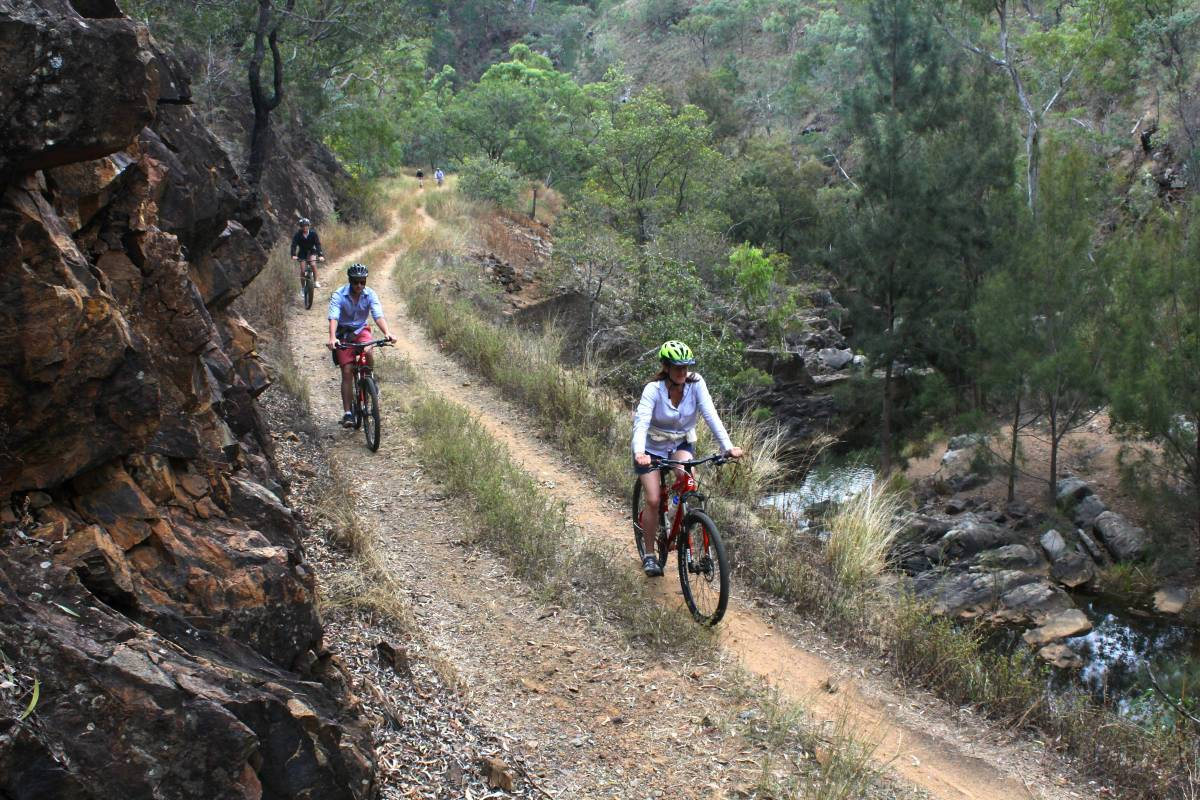 Cyclists riding the former rail line above Eureka Creek