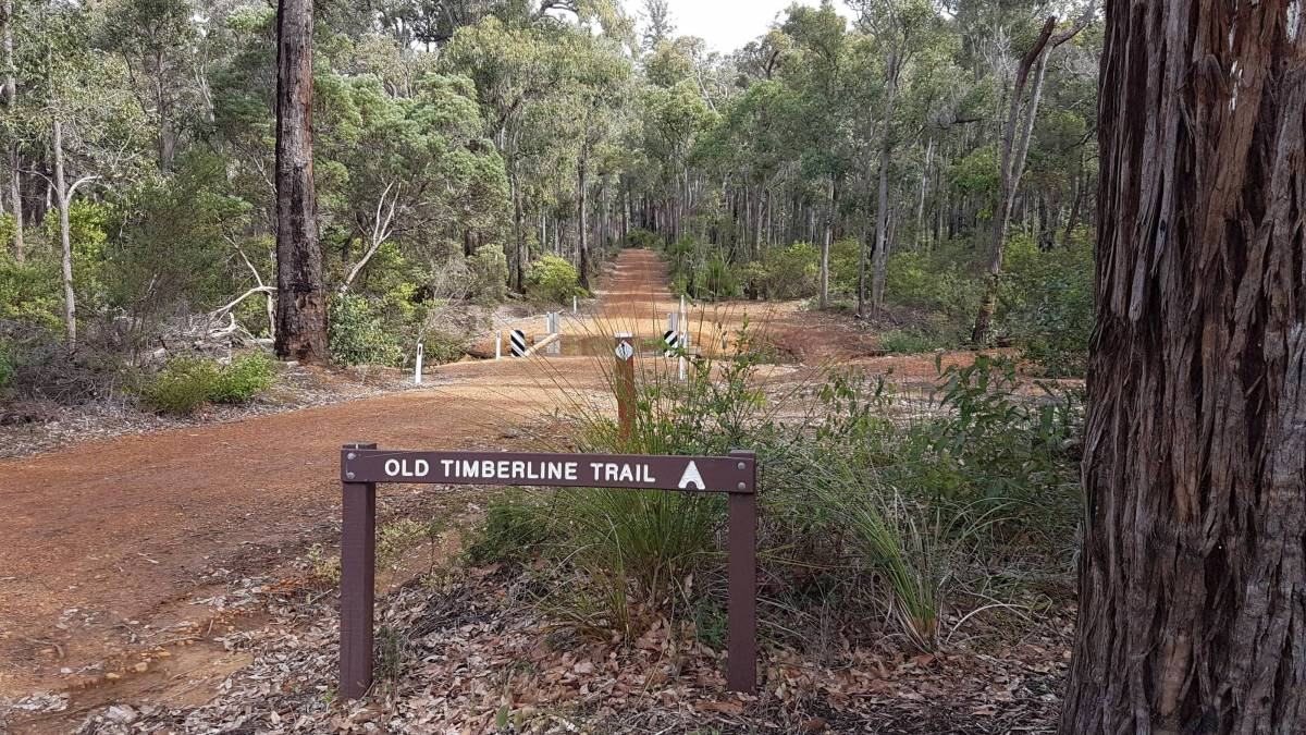 Start of the trail where it branches off the Sidings Rail Trail at Cambray Sidings (Garry Long 2018)