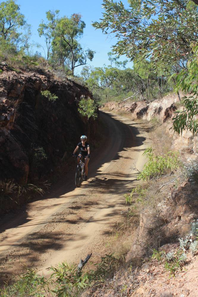Original alignment cuttings in the Featherbed Ranges 2014