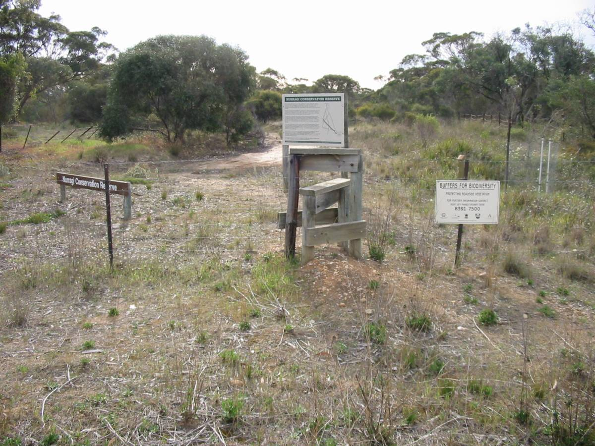 Fence crossing stiles Milang (2006)