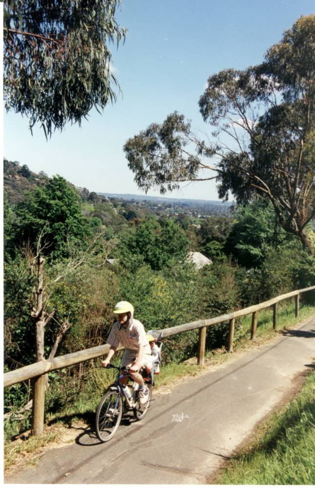 Trail climb from Upper Fern Tree Gully with views back to Melbourne