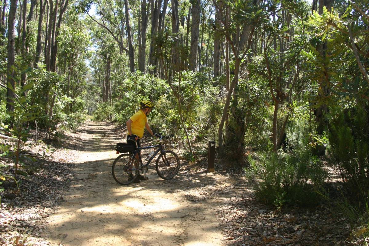 Watch for the trail markers. They can be easy to miss when cycling