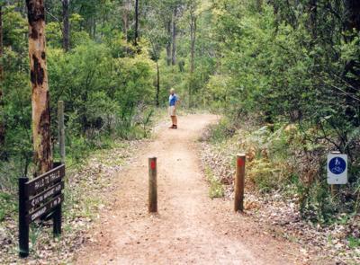 Trail between Margaret River and Cowaramup