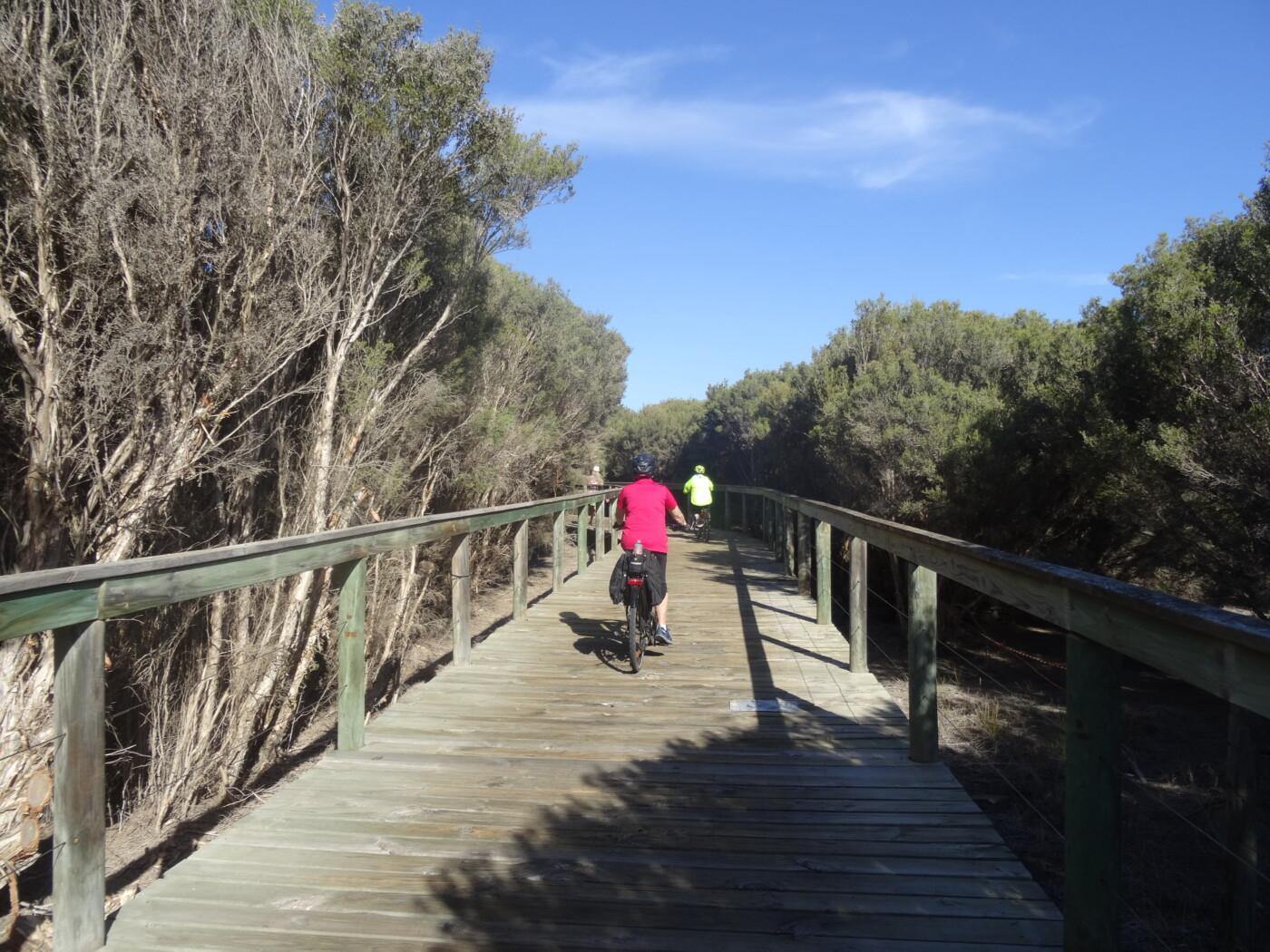 boardwalk through Tokuremoar Wetland