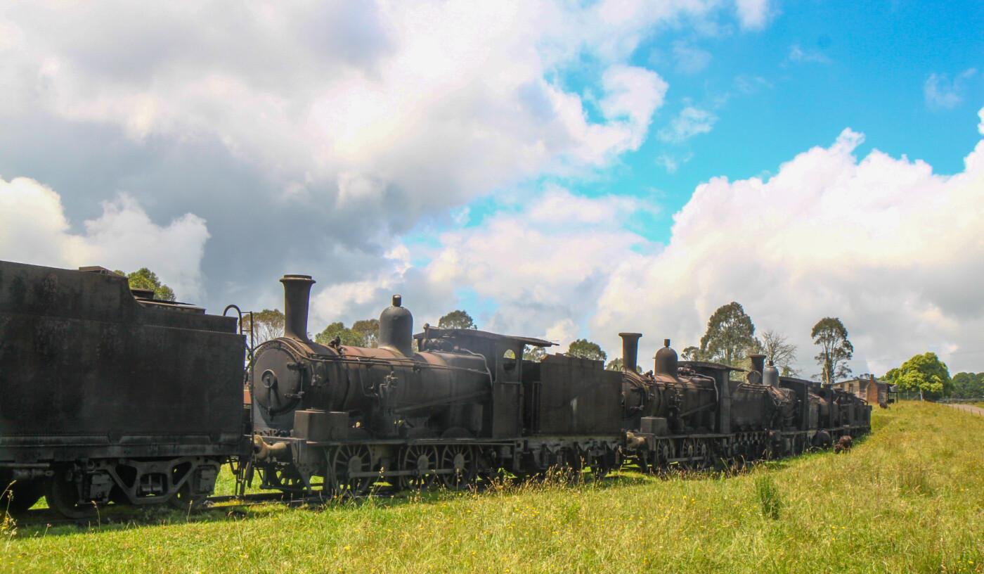 Preserved locomotives at Dorrigo