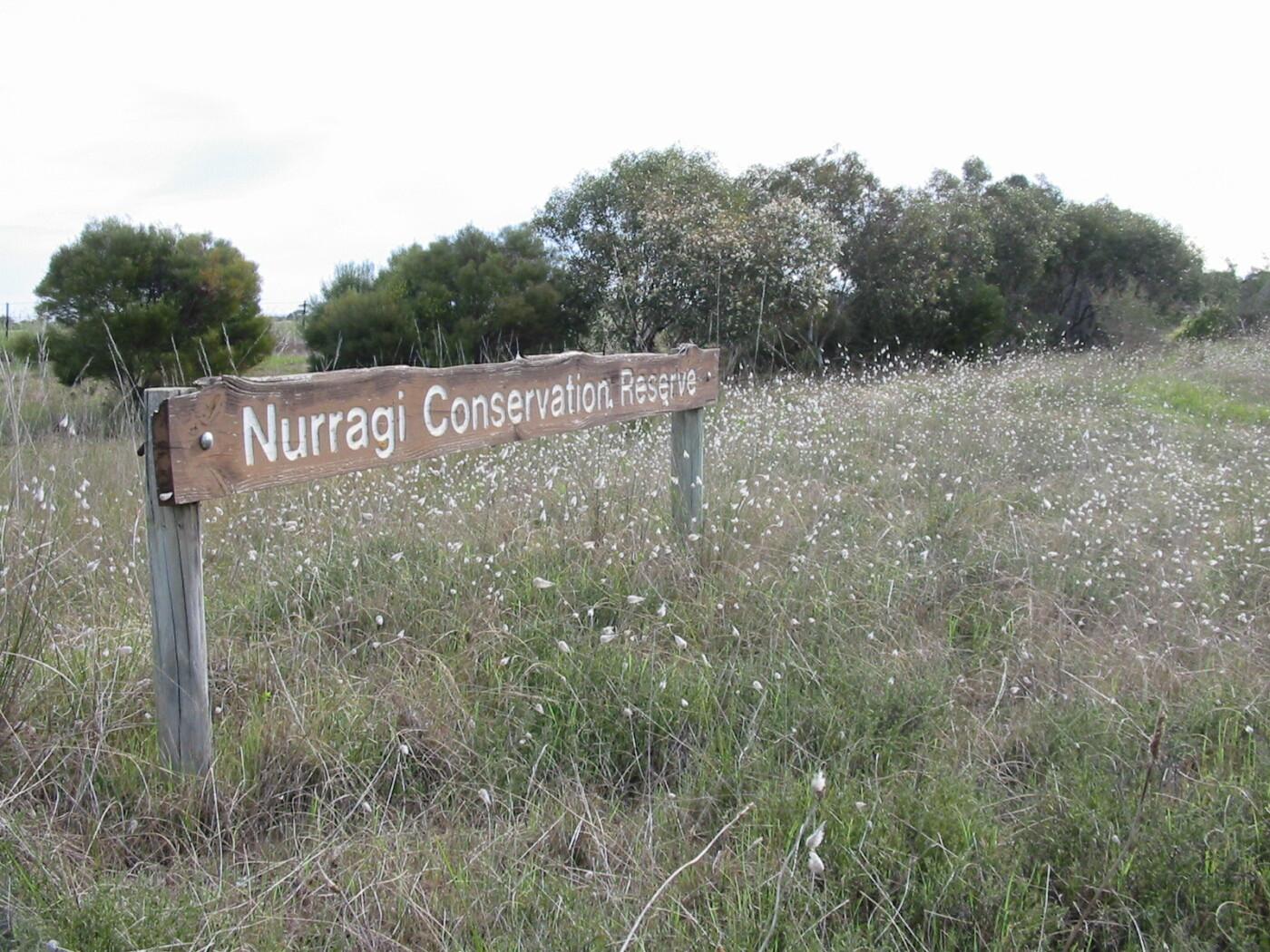 Nurragi conservation trail, September 2006