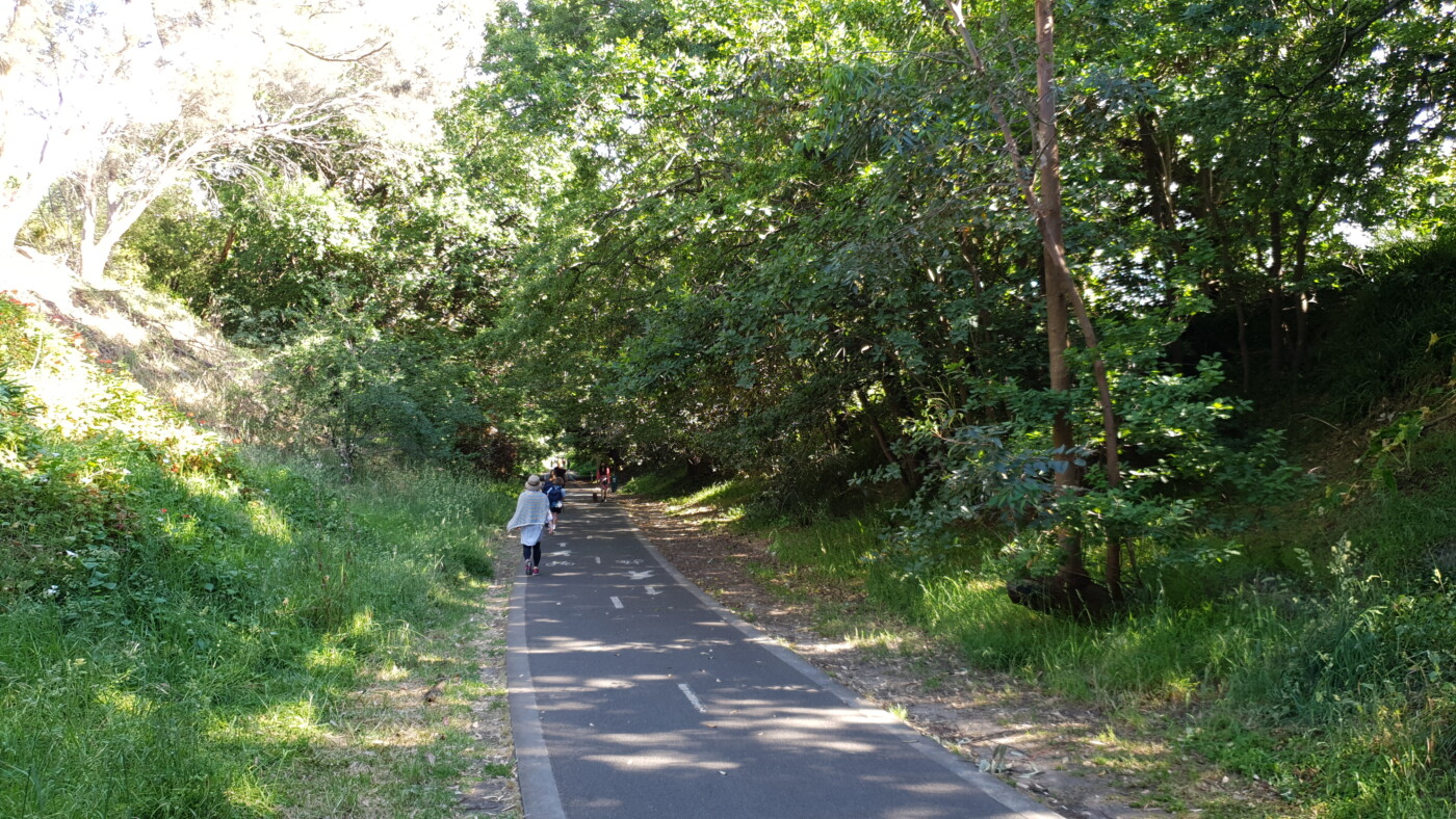 The deep and shady cutting near Mont Albert Rd (2020)