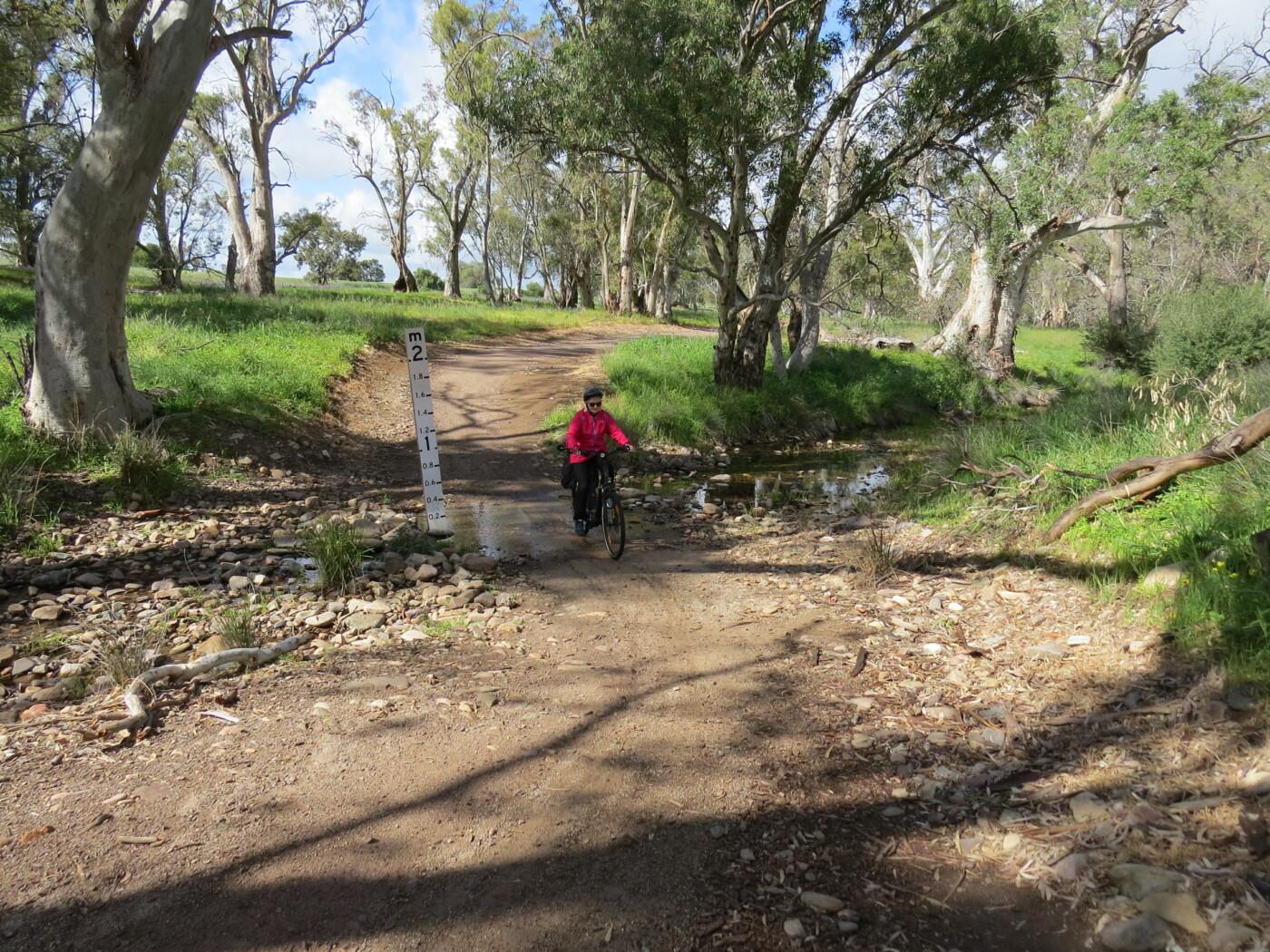Willochra Creek crossing  2020