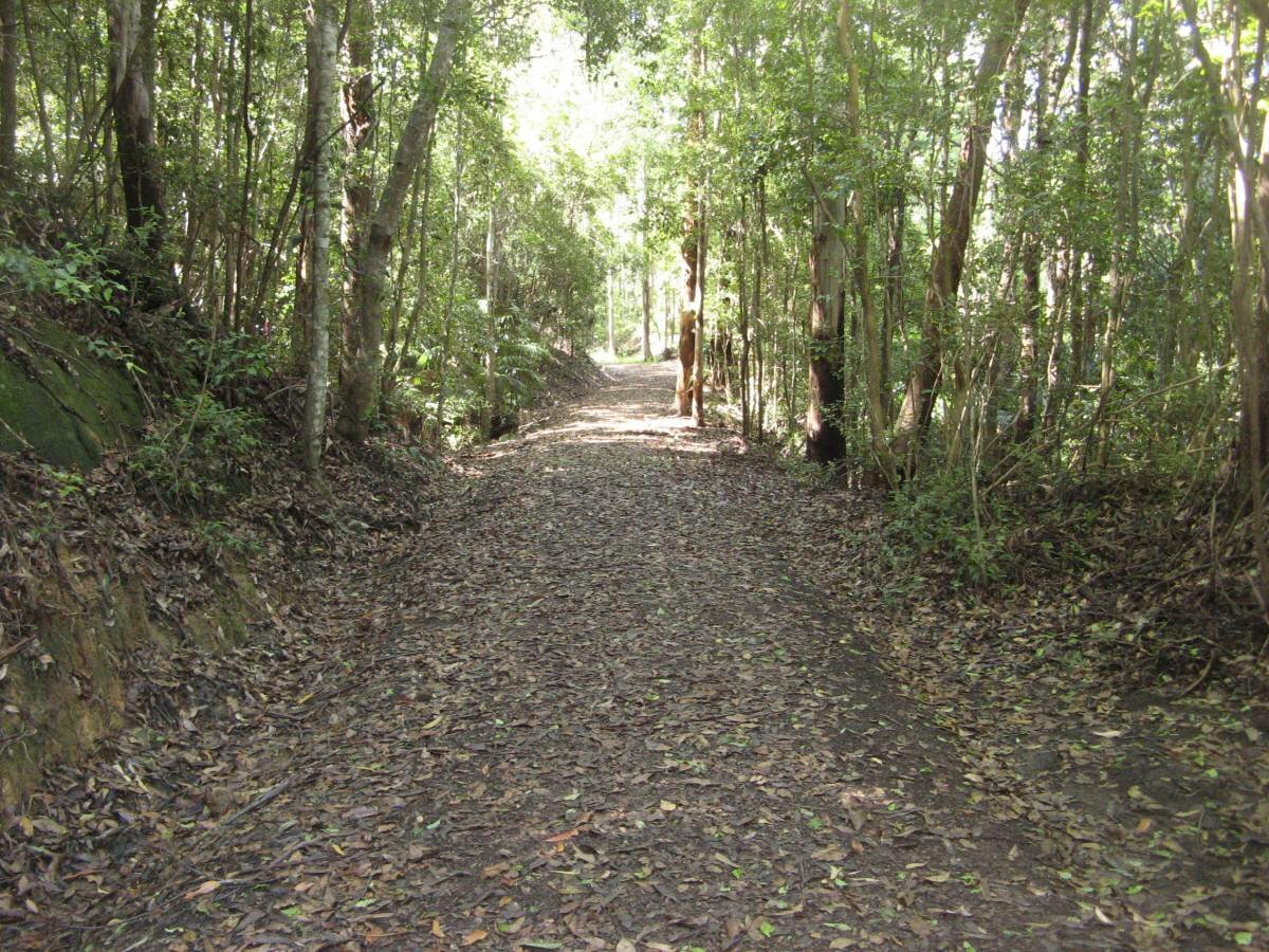 Section of the Buderim Tramway heritage trail