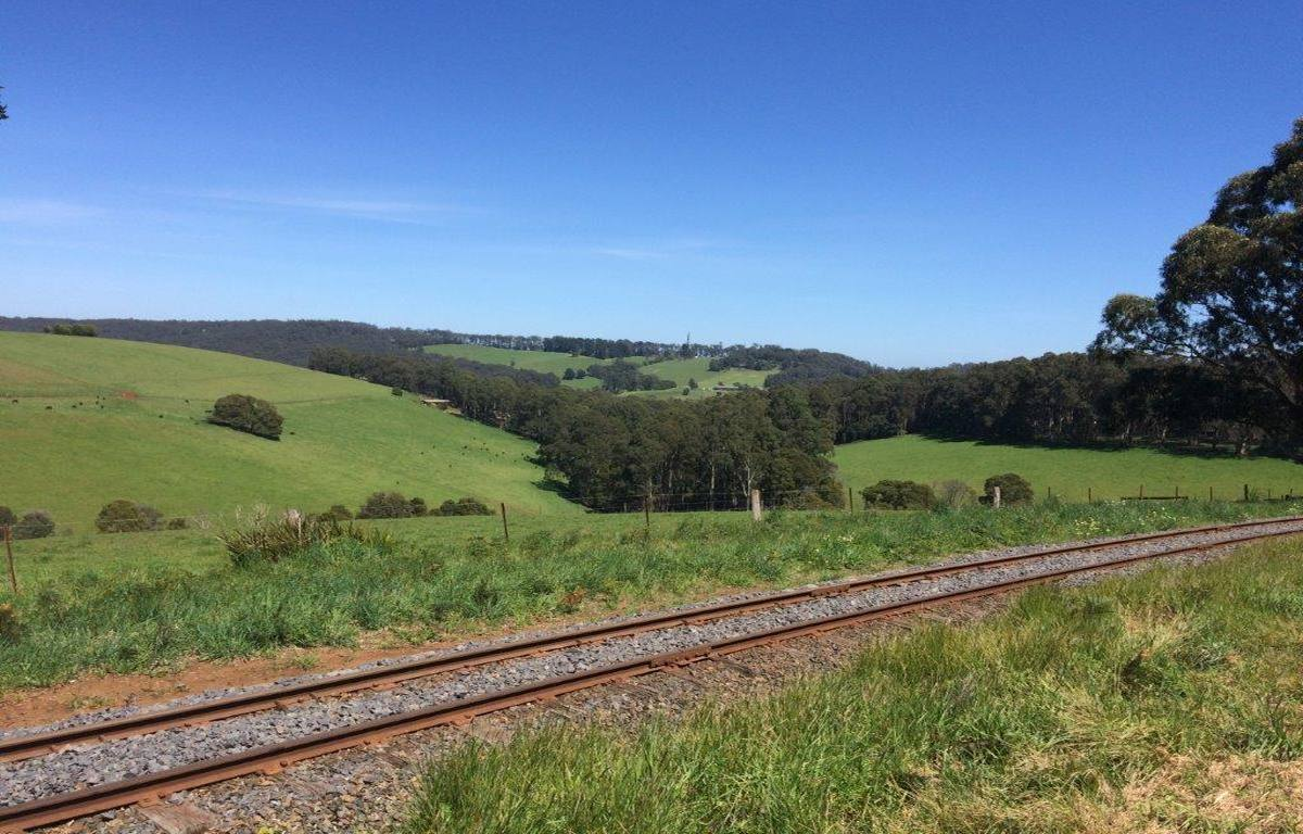 The scenery between Cockatoo and Gembrook (2018)