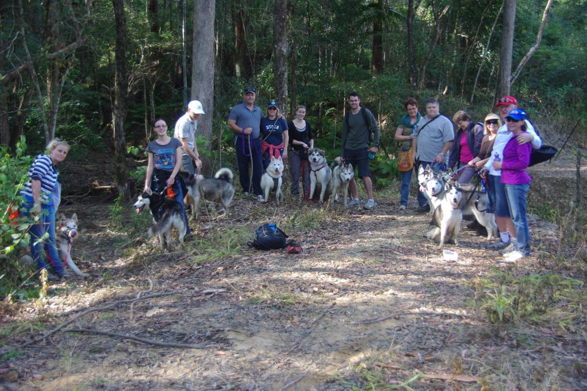 Dogs and their owners also enjoy the trail. (2011)