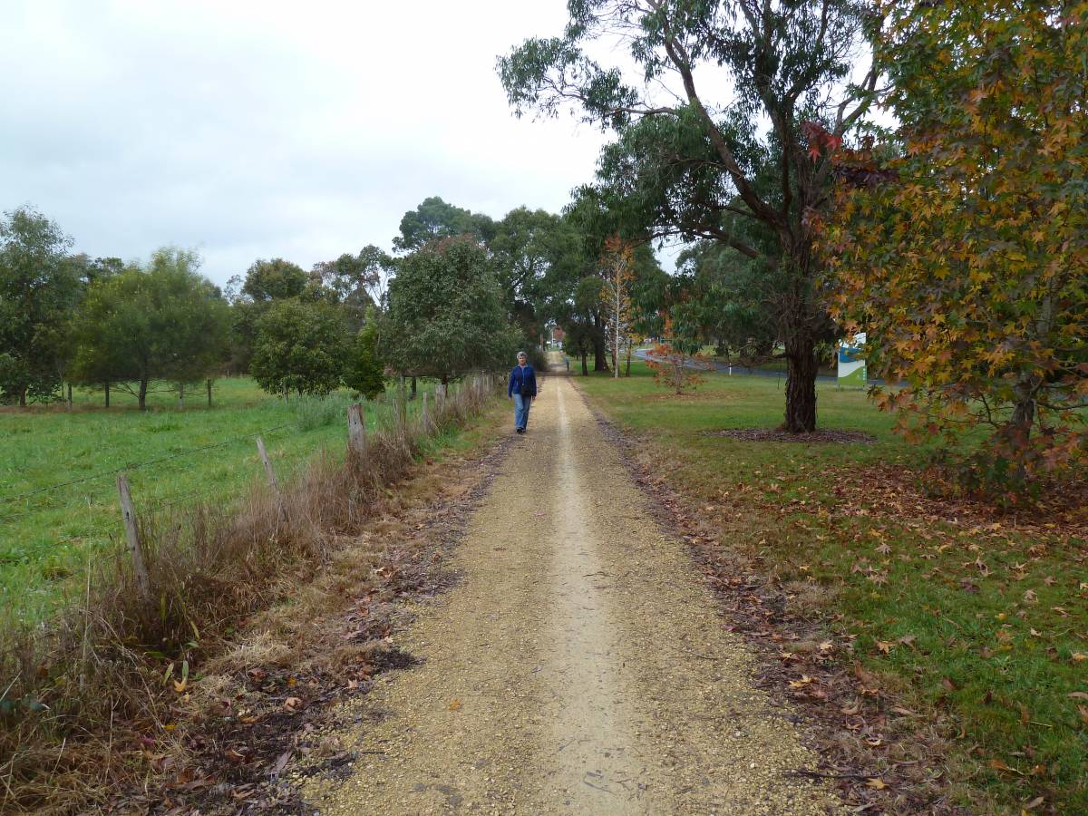 Between Forrest and the Barwon River. (2011)