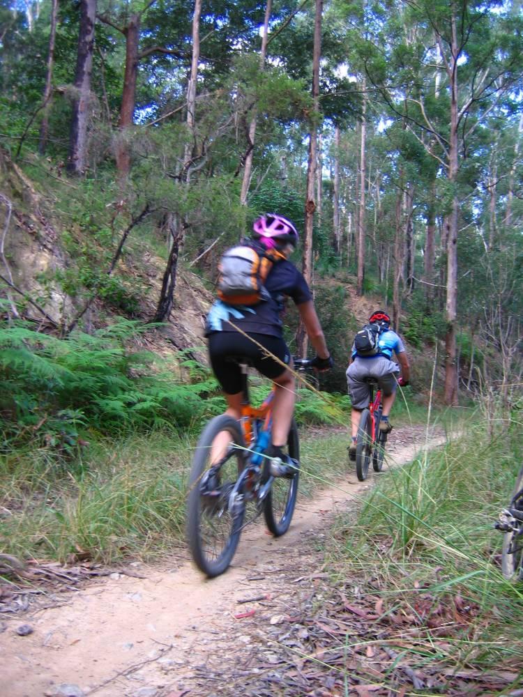 Mountain bikers enjoying the Wamuran section (2006)