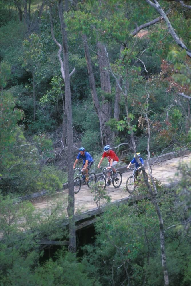 One of the many bridges on the trail.  Munda Biddi Trail Foundation