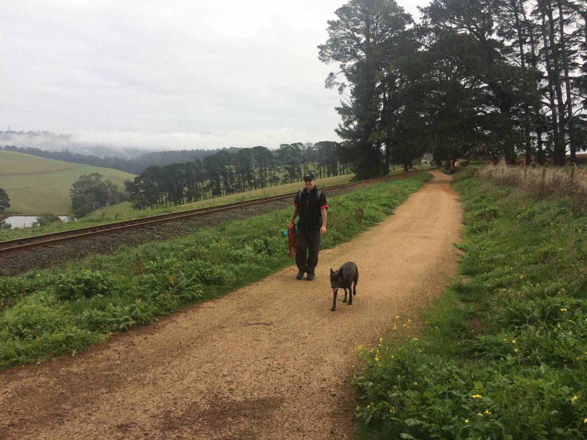 Enjoying the trail between Cockatoo and Gembrook (2018)