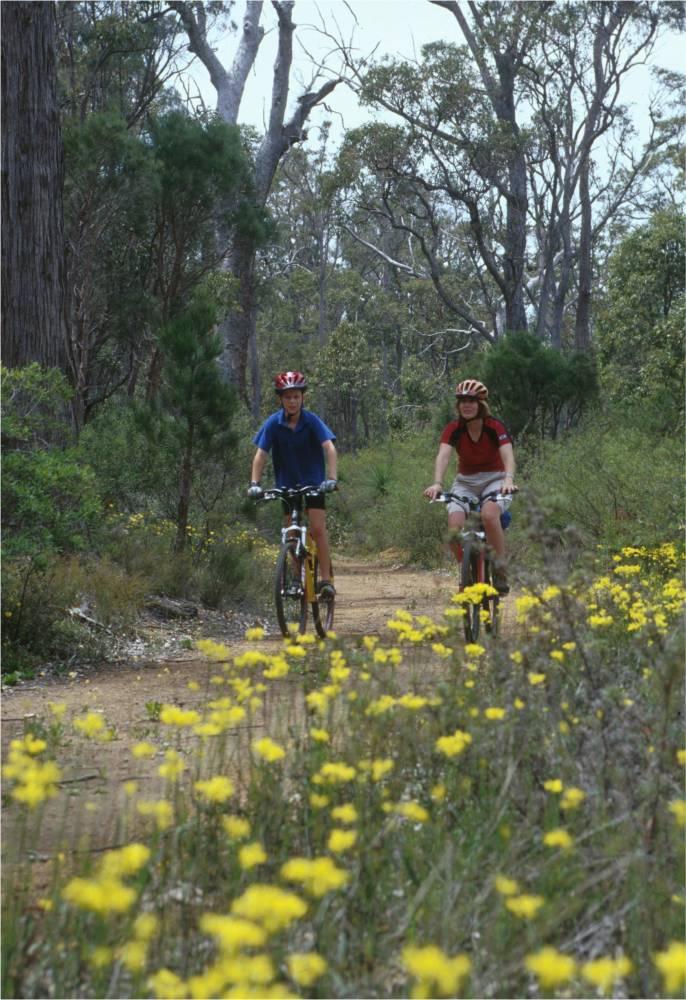 Typical scenery along the trail. Munda Biddi Trail Foundation