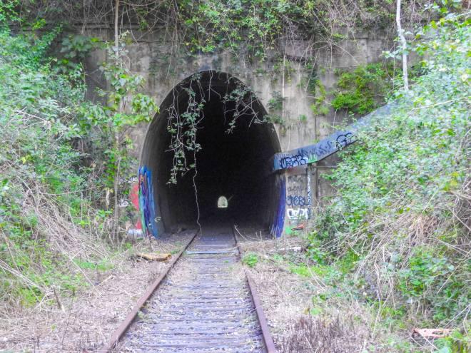 N60 455 Burringbar tunnel 2017 07 DSCN6757