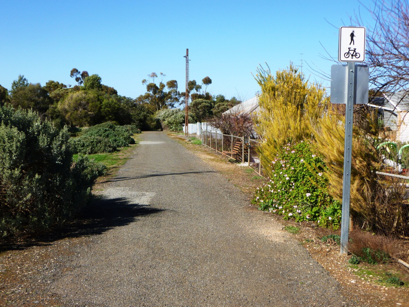 trail heads toward Thiele Hwy 2021