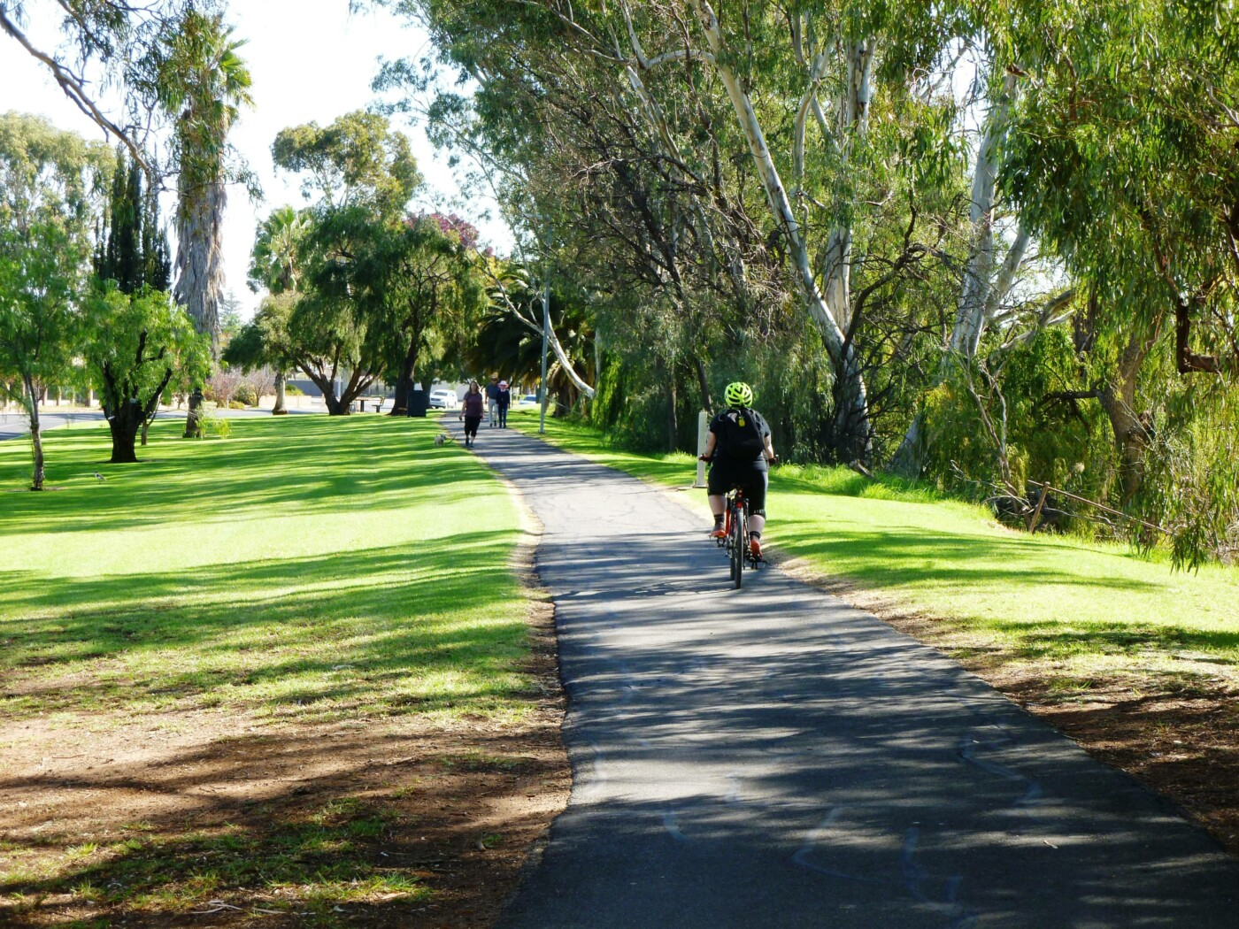 Renmark river frontage trail 2020