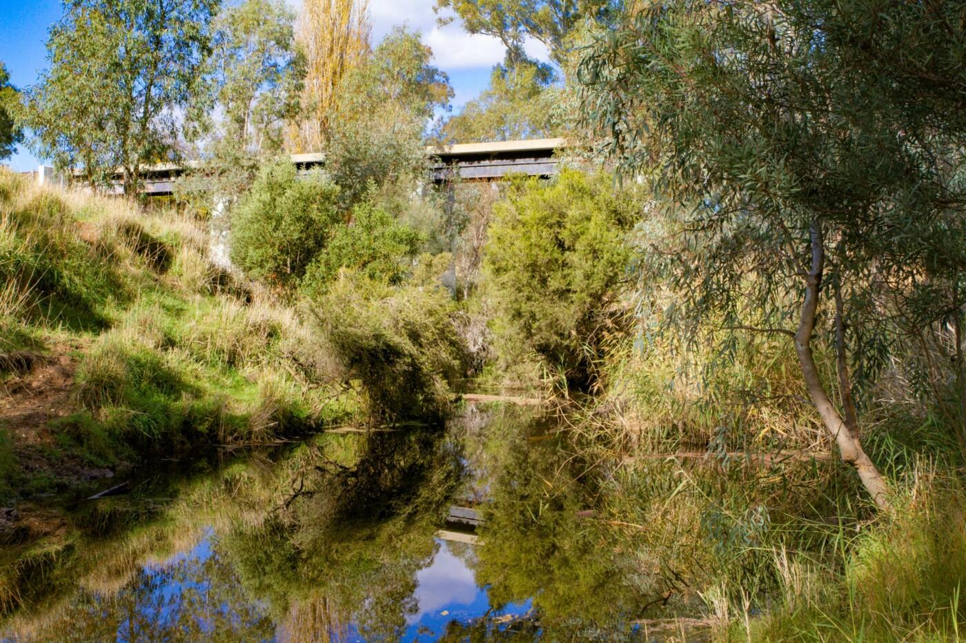 Bridge over Loddon CMRT Guilford (2020)