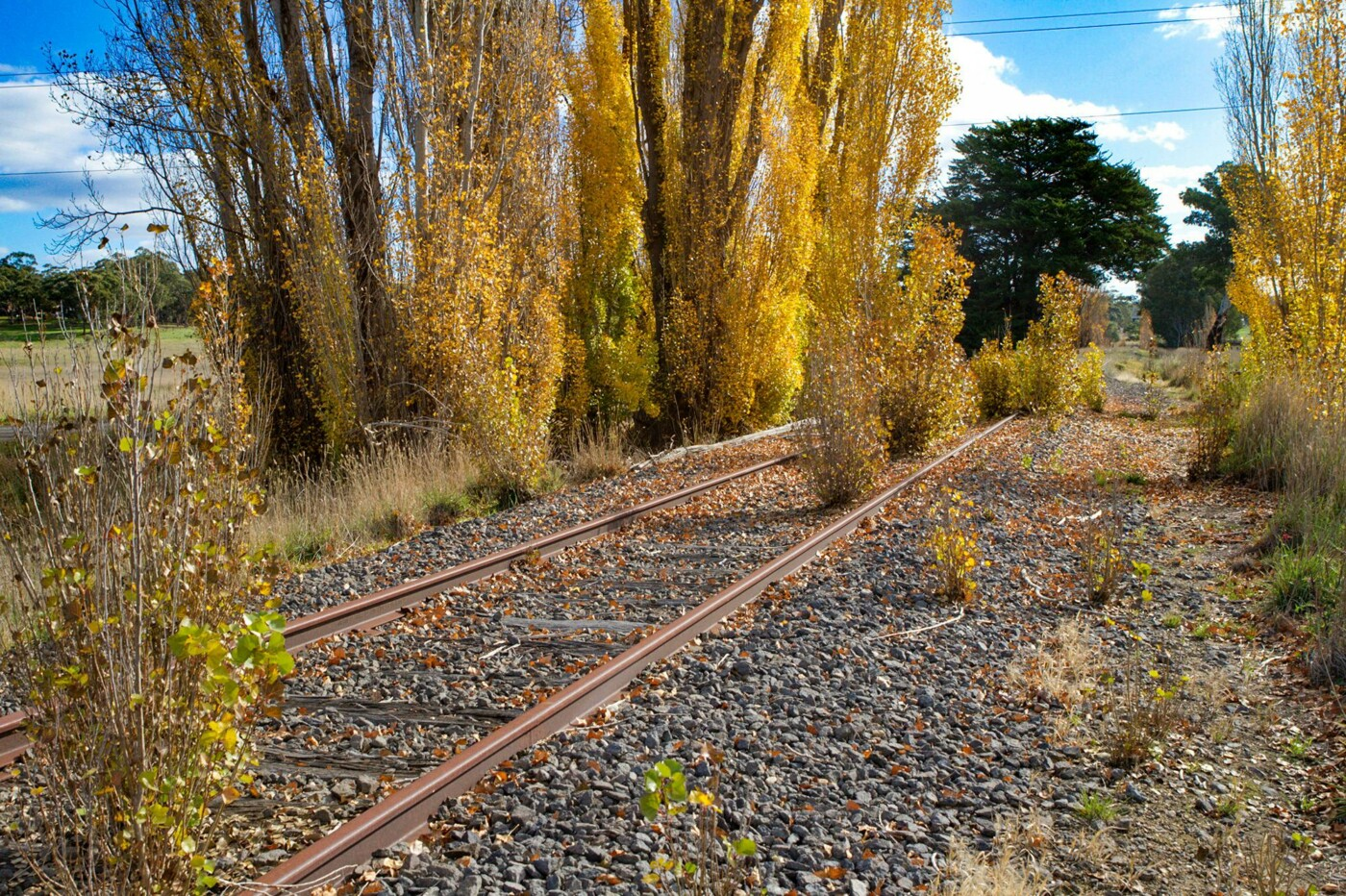 The corridor between Guildford and Newstead (2020)