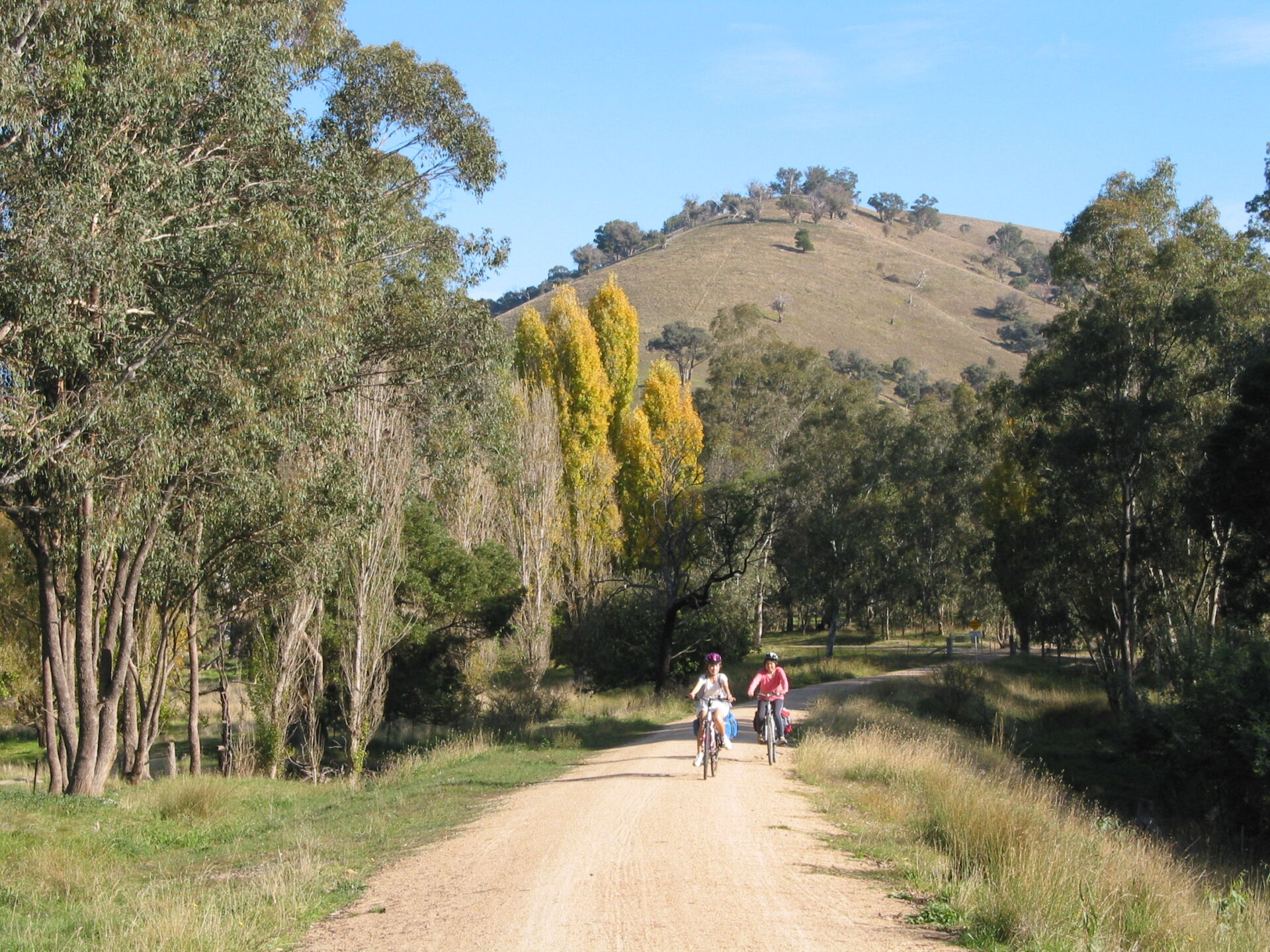 Cruising down from Cheviot Tunnel to Molesworth (2012)