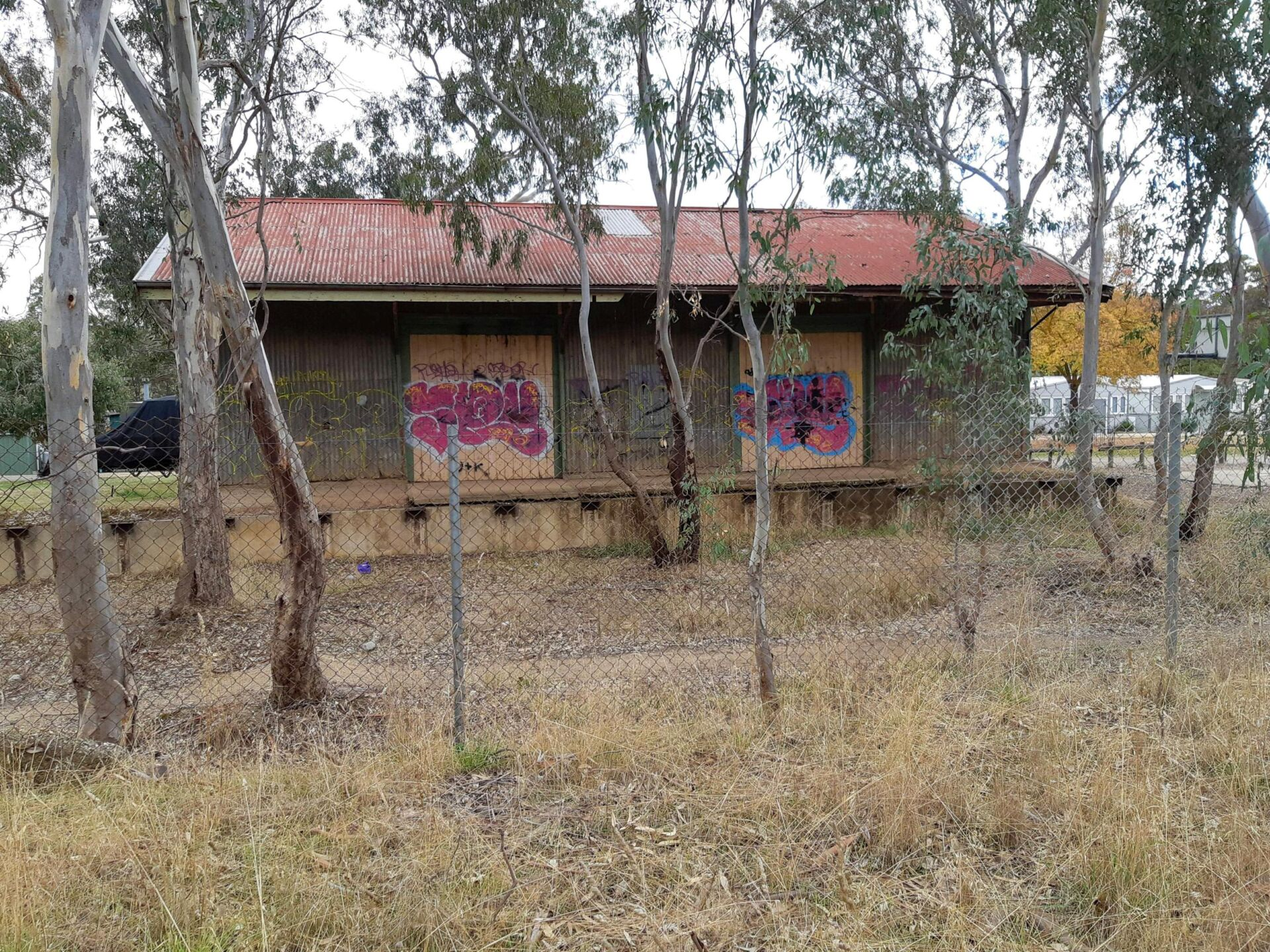 'How's the Serenity' at the Bonnie Doon good shed. Perhaps a bit too much and looking forward to restoration (2021)