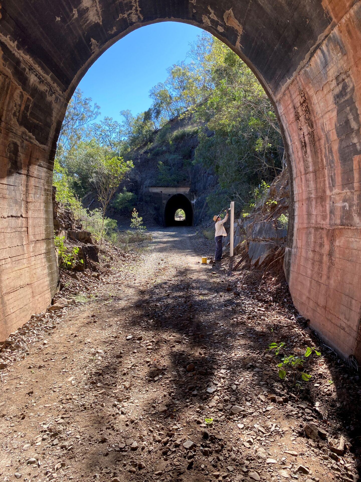 Boyne Burnett Rail Trail – Opening the Dawes Range Section